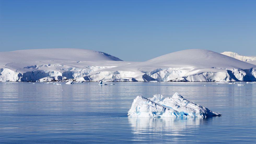 Cruceros Antártida