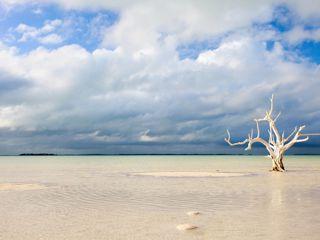 Croisières Bahamas