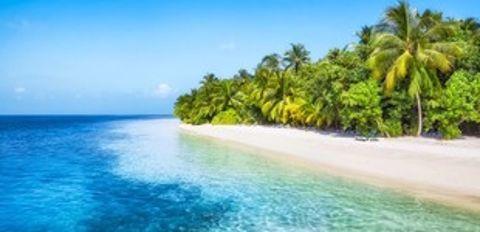 Caraïbes avec vol