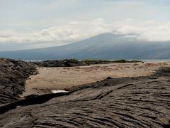 Crociere Punta Espinoza