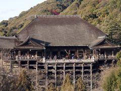 Crociere Shimizu