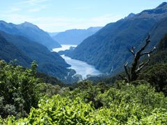 Cruceros Doubtful Sound