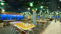 Coconut Grove Bar & Grill